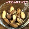 ブラジルナッツはどんなナッツ?画像