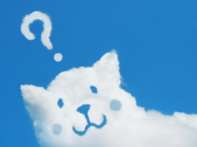疑問の画像雲と猫