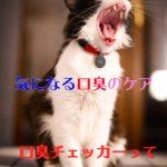 タニタブレスチェッカー【口コミ】気になる口臭を知ろう